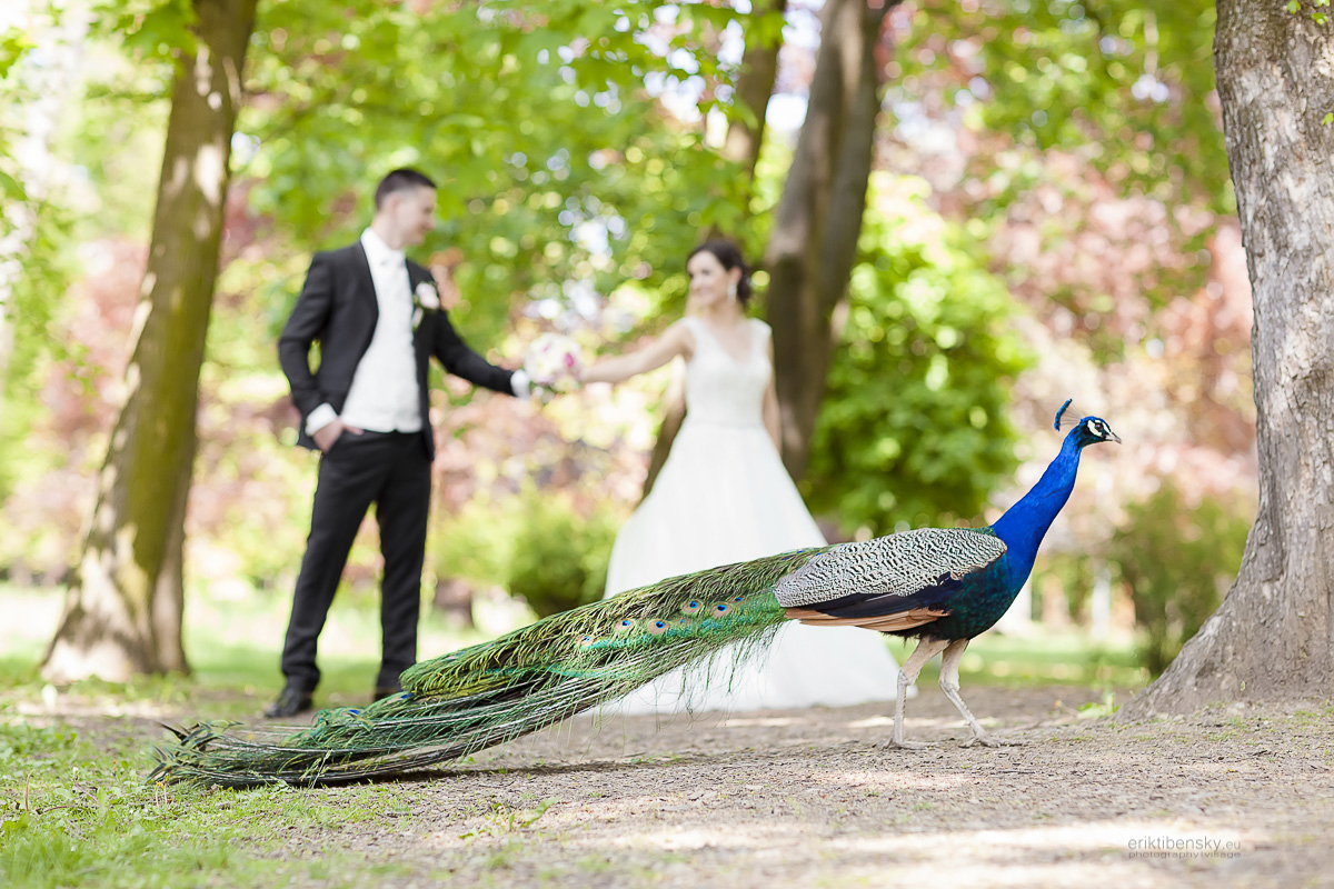 eriktibensky.eu-svadobny-fotograf-wedding-photographer-2149